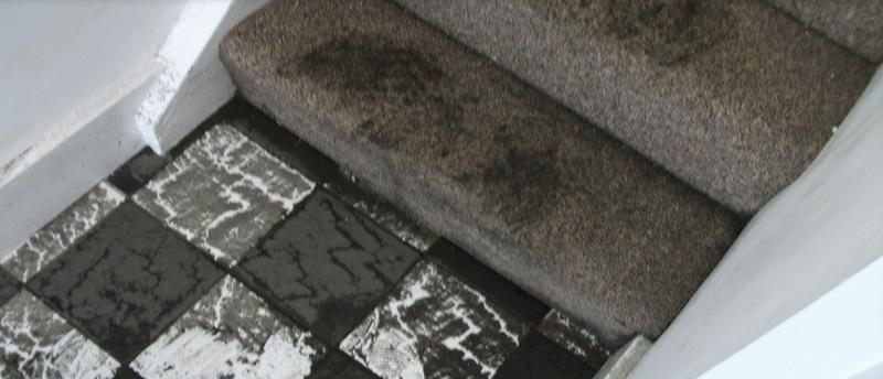 Sewage contamination shows strength of Rainbow network