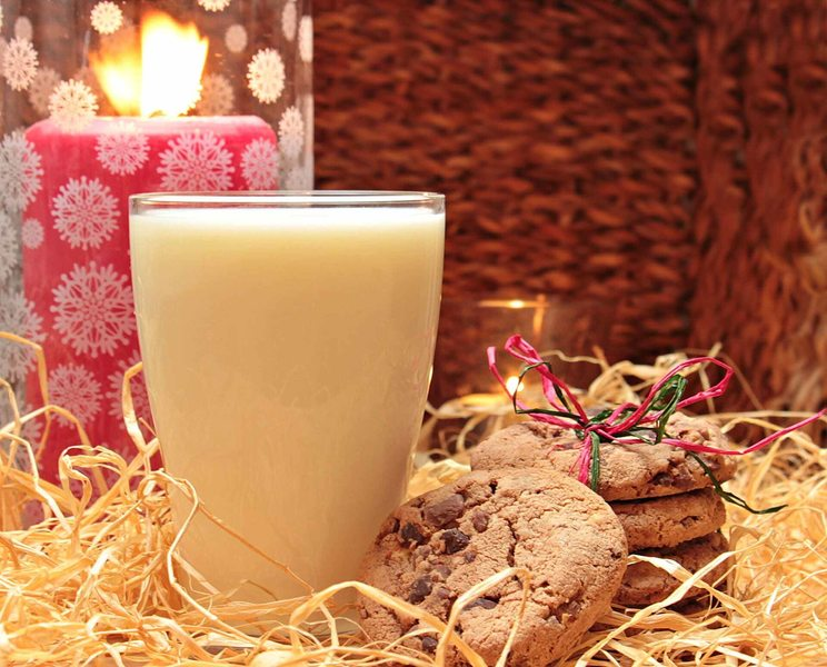 10 ways to minimise the Christmas fire risk in your home