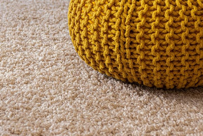 Creating a Memorable First Impression: Carpet, Upholstery and Furniture Cleaning Tips & Tricks
