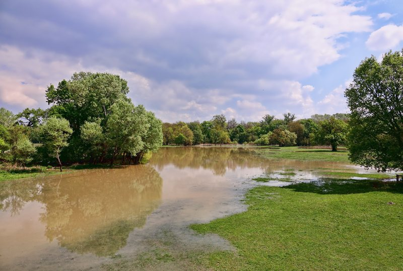 2019: A Year Of Dramatic Weather Events